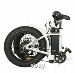 Ecotric Bike 48V Fat Tire Portable and Folding Electric Bike with LCD Display