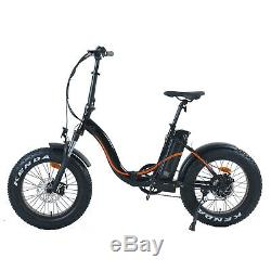 Electric Bike ebike Foldable Flat Style Brushless Rear Motor with LCD Display