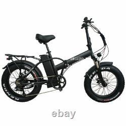 Folding Bicycle 20 Fat Tire 750W 48V 13AH Electric Bike Beach Snow Black Color